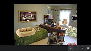 Dog Home Decor by Dog Room Decor Android Apps On Google Play
