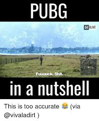 pubg memes pubg 54 alive 54 fuuuuck shit in a nutshell this is too accurate