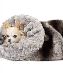 Cuddle Cup Dog Bed Cold Weather Tips And Products For Your Pet Jenn And Tonic