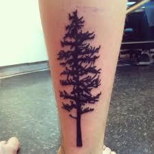 pine tree tattoos pine tree pine and