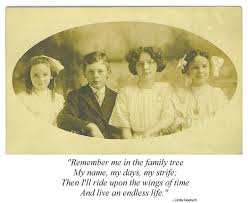 best 25 family tree quotes ideas on family reunion