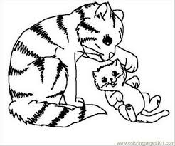 pages cats mammals free printable coloring page online 552542