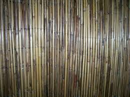 Bamboo Fencing Rolls Home Depot by Outdoor Reed Fencing Split Bamboo Fencing Bamboo Fence Roll