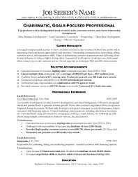 examples of professional resumes sample sales resumes examples