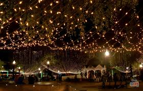 christmas lights ocala fl light up ocala starts november 18