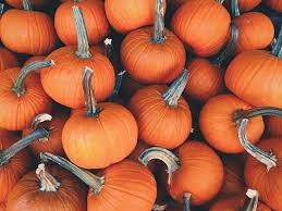 5 tips to host a super fun no stress pumpkin carving party for kids