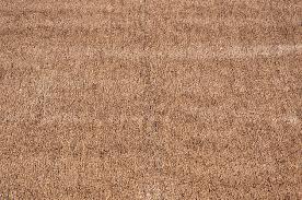 Fake Grass Outdoor Rug Amazon Com Indoor Outdoor Brown Tan Artificial Grass Turf Area