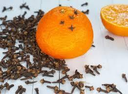diy decor idea spiced citrus pomanders inhabitat