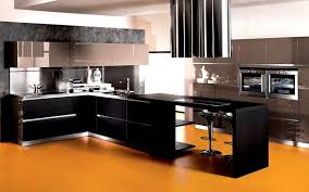 baffling modular kitchen with parallel shape come with black color