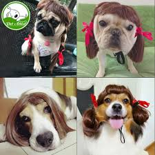 online buy wholesale dog costume accessories from china dog
