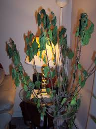 How To Save A Dying Plant 100 How To Revive A Dying Plant Organic Booster Indoor