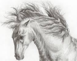 horses u0026 art