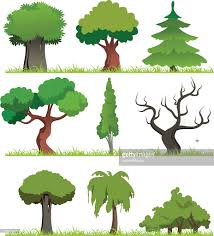cartoon forest vector art getty images