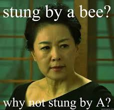Tiger Mom Memes - stung by a bee why not stung by a tiger mom quickmeme