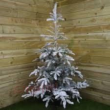 210 cm christmas tree shop for 210 cm christmas tree at www