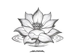 34 best lotus flower tattoo outline images on pinterest board