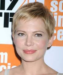 pixie hair cuts on wetset hair 61 best cute short hair styles images on pinterest pixie
