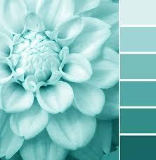 22 best paint colors images on pinterest blue paint colors