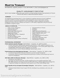 Resume Format Website Help Me Write Thesis Statement How To Create Resume On Word Best