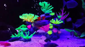 glow in the decorations aquaholics glow aquarium fish tank coral ornament