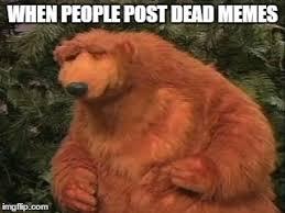 Unimpressed Meme - bear s unimpressed face imgflip