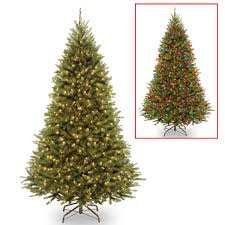 hypoallergenic real christmas tree christmas decore