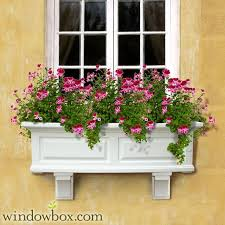 129 best window boxes images on pinterest window boxes window