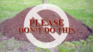 landscaping supply near me how not to mulch a tree land designs unlimited llc