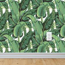 nursery wall decals and removable wallpaper peel and stick to banana leaf wallpaper banana leaves drawing tropical wall mural removable wallpaper wall
