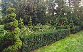 Ny Topiary - topiary king garden designs
