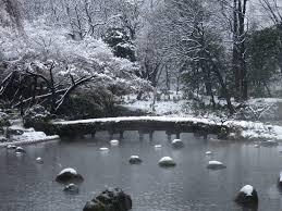today u0027s cute little season winter jonelle patrick u0027s only in japan