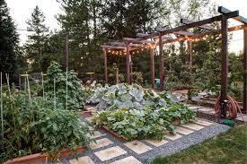 Urban Veggie Garden - urban vegetable garden houzz