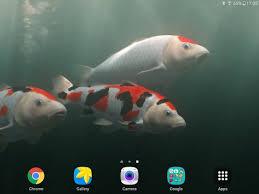 koi free live wallpaper apk koi free hd live wallpaper apk free personalization app