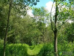 Acreages For Sale by Acreages Lots And Lands For Sale Commission Free In Sorel Tracy