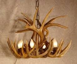 How To Make Antler Chandeliers How To Make An Antler Chandelier Deer Antlers Antlers And