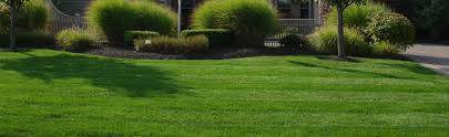 Family Garden Columbus Ohio Lawn Seeding And Fertilizing Healthylawn Turfcare Columbus