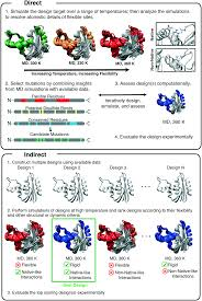 insights from molecular dynamics simulations for computational