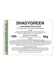 shadygreen grass seed for a lawn in damp shady places