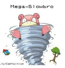 Slowbro Meme - beautiful 罎蜩窶ヲ 25 best memes about mega slowbro wallpaper site