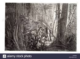 south america american native tribe rain forest people culture