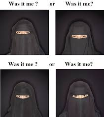 Burka Meme - french woman gets in the face of a burqa wearing against the law