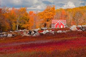 beautiful autumn barn photos fall foliage pictures