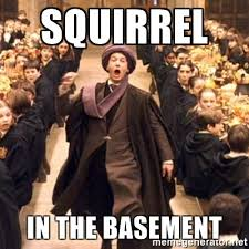 Squirrel In Basement by Squirrel In The Basement Troll In The Dungeon Meme Generator