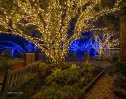 meadowlark s winter walk of lights virginia is for