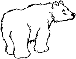 black bear outline coloring home