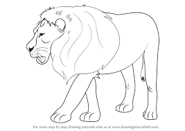 learn draw lion zoo animals step step drawing
