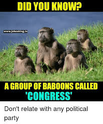 Baboon Meme - 25 best memes about group of baboons called congress group