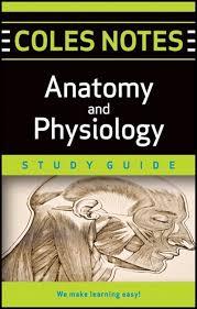 Human Anatomy And Physiology Books Přes 25 Nejlepších Nápadů Na Téma Anatomy And Physiology Book Na