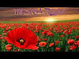 imagenes flores relajantes flores relajantes vol2 la mejor musica relax the best relax music