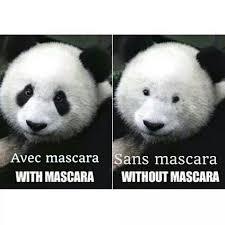 Panda Meme Mascara - the best mascara memes memedroid